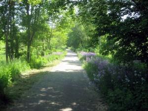 Brooke Pioneer Trail